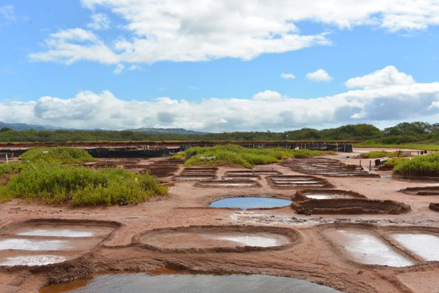 Kauai Salt Ponds