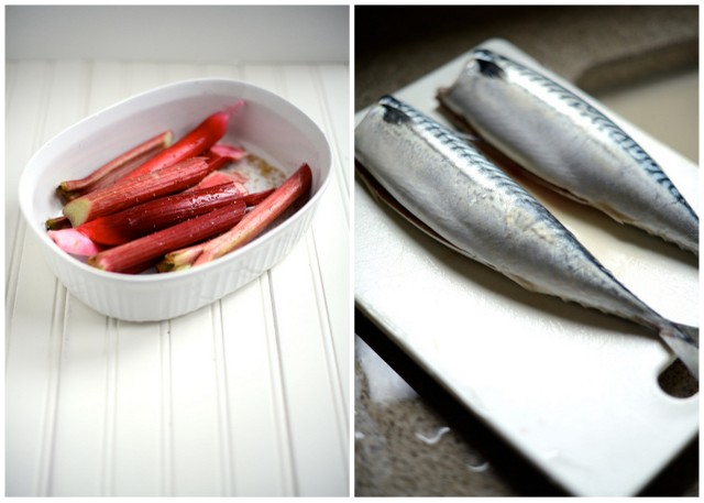 Rhubarb and Mackerel Collage